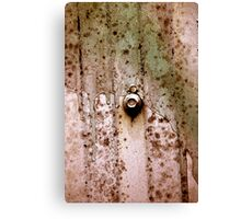 bolted Canvas Print