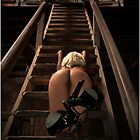 To The Rafters by Polar Impressions  Photography