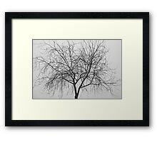 Tree Abstract Black and White Framed Print