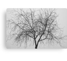 Tree Abstract Black and White Canvas Print
