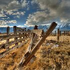 Old Corral 2 by Dianne Phelps