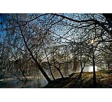 Frosty morning at Woodland Waters, Ancaster Lincolnshire Photographic Print