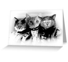 The Three Catfield Sisters Greeting Card
