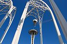 Arches & Needle by John Schneider