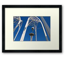 Arches & Needle Framed Print