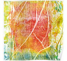Abstract vines on a rainforest tree Poster
