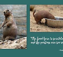 Groundhog by Paula Tohline  Calhoun