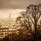 Winter Days in Paris by Kimmo Savolainen