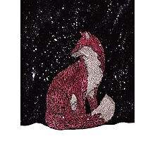 Leafy Fox in the Snow Photographic Print
