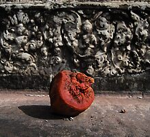 Pomegranate  by NotManhattan