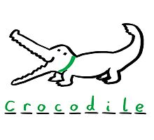 Draw Draw Crocodile by DrawDraw