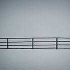 Montana Whiteout by lincolngraham