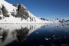 Reflecting on Antarctica 004 by Karl David Hill