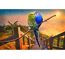 love birds and majestic landscape Photographic Print
