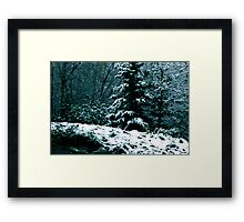 First Snow Framed Print