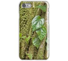 Leaves and moss in rainforest near Kuranda iPhone Case/Skin