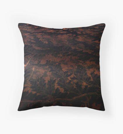 William Morris Landscape Throw Pillow
