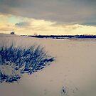 Wisconsin Winter by Josrick