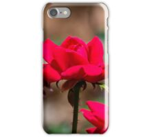 Red Rose iPhone Case/Skin