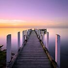 Safety Beach Jetty Sunset by Norm Tilley