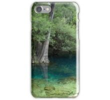 Suwannee Dreams iPhone Case/Skin