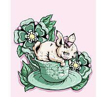 Bunny in Tea Cup Photographic Print