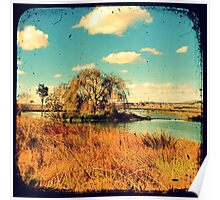 Dangars Lagoon Willow - Through The Viewfinder (TTV) Poster