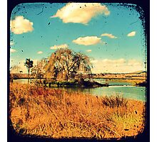 Dangars Lagoon Willow - Through The Viewfinder (TTV) Photographic Print