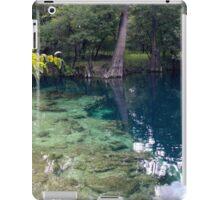 Royal Spring iPad Case/Skin