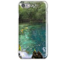 Royal Suwannee iPhone Case/Skin