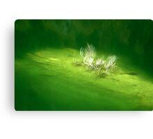Sylvenstein- Main Water Reservoir Canvas Print