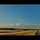 Road to the Highvelds by Lebogang Manganye