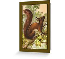 Red Squirrel Greetings Greeting Card