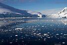 Reflecting on Antarctica 017 by Karl David Hill