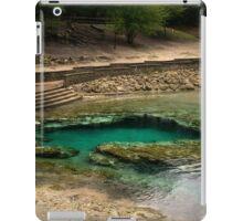 Little River Springs iPad Case/Skin