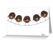 FIVE ROBINS Greeting Card