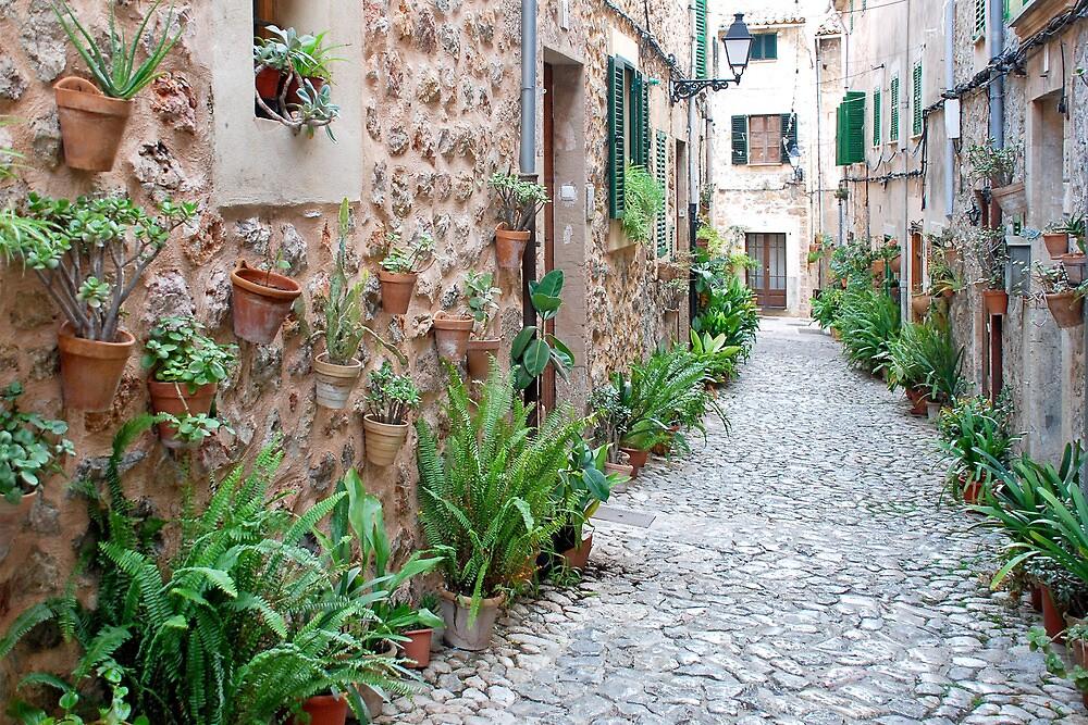 Vegetable world in Valldemossa by Arie Koene
