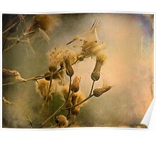 torny flowers Poster