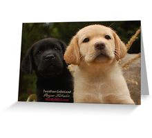 What is that? Greeting Card