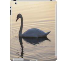 Swan on winters lake iPad Case/Skin