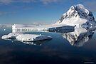Reflecting on Antarctica 022 by Karl David Hill
