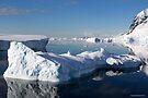 Reflecting on Antarctica 023 by Karl David Hill