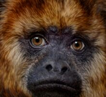 Howler Monkey Sticker