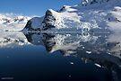 Reflecting on Antarctica 025 by Karl David Hill