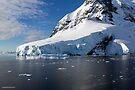 Reflecting on Antarctica 028 by Karl David Hill