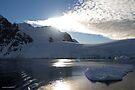 Reflecting on Antarctica 031 by Karl David Hill
