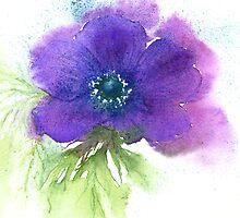 Single anemone by Jacki Stokes