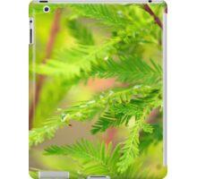 Green Cypress  iPad Case/Skin