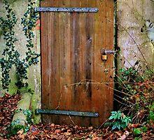 Secret Entrance by silentstead