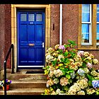 Blue Door, Melrose Borders, Scotland by Jessica Karran